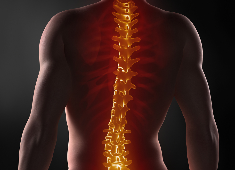 Spinal Services at Sports Surgery Clinic