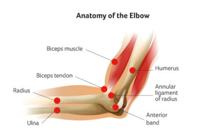 Elbow Surgery at Sports Surgery Clinic