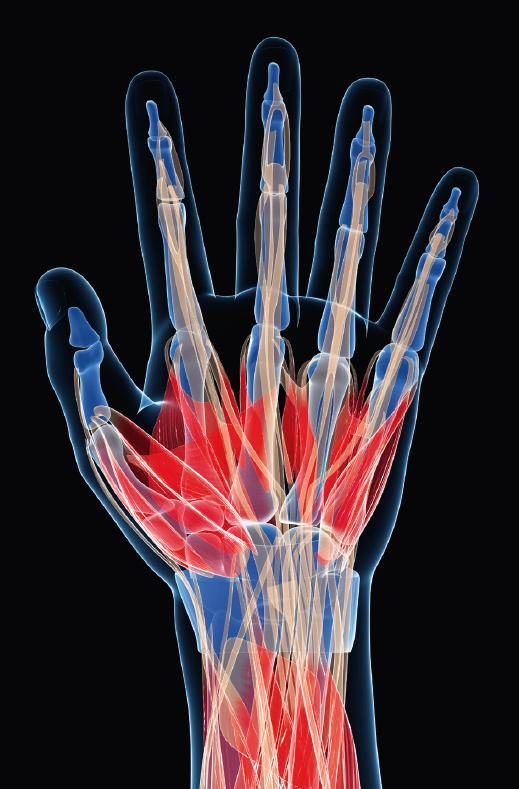 Hand Surgery Wrist Injuries